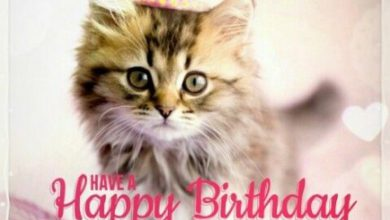 Best happy birthday quotes Image 390x220 - Best happy birthday quotes Image