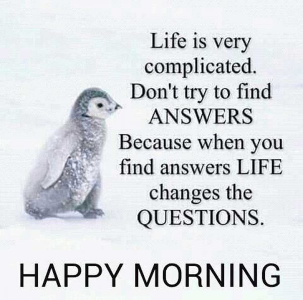 Birds new good morning photo Greetings Images - Birds new good morning photo Greetings Images