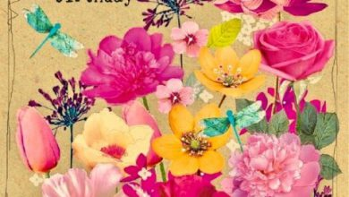 Birthday wishes s Image 390x220 - Birthday wishes s Image