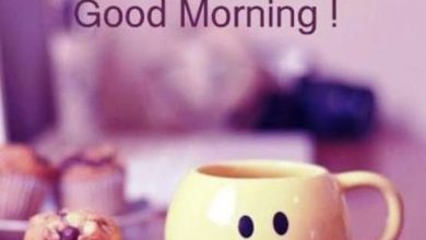 Coffee and Breakfast Greeting Good morning today Images 390x220 - Coffee and Breakfast Greeting Good morning today Images