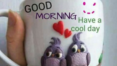 Coffee and Breakfast Greeting Good morning website Images 390x220 - Coffee and Breakfast Greeting Good morning website Images