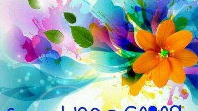 Flower good day morning photo Greetings Images 390x220 - Flower good day morning photo Greetings Images