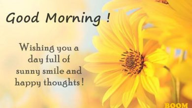 Good morning greetings image Images 390x220 - Good morning greetings image Images