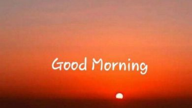 Good morning new today Images 390x220 - Good morning new today Images