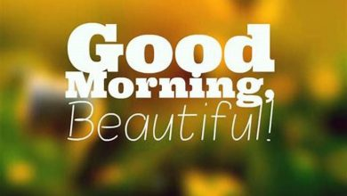 Good morning wallpaper Images 390x220 - Good morning wallpaper Images