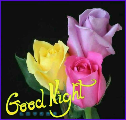 Good night greetings quotes image - Good night greetings quotes image