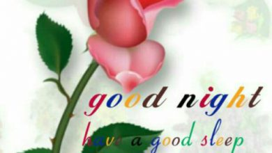 Good night image photo image 390x220 - Good night image photo image