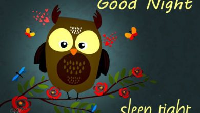 Good night logo image 390x220 - Good night logo image
