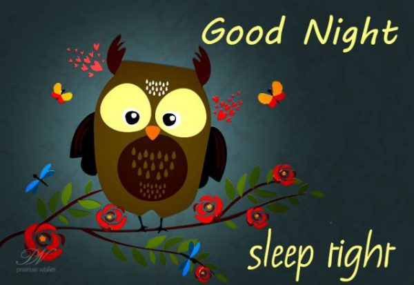Good night logo image - Good night logo image