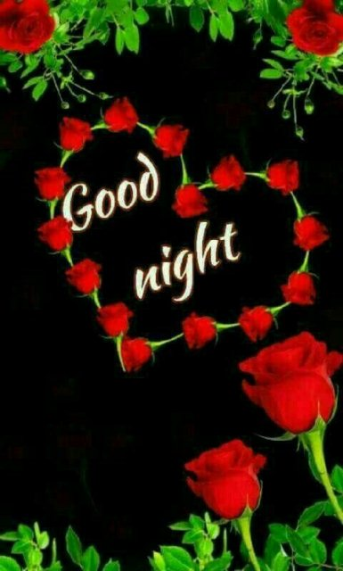 Good night memes for her image - Good night memes for her image