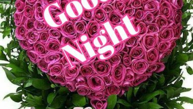 Good night message for her image 390x220 - Good night message for her image