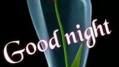 Good night monday images image 390x220 - Good night monday images image