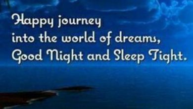 Good night phrases image 390x220 - Good night phrases image