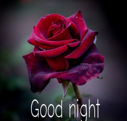 Good Night Quotes For Friends Image Greetings Images