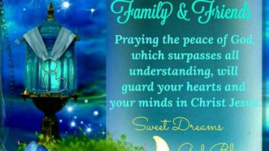 Good night sweet dreams messages image 390x220 - Good night sweet dreams messages image