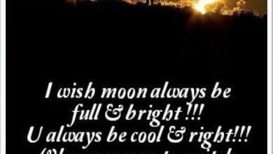 Good night to special person image 390x220 - Good night to special person image