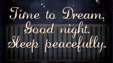 Good night to u image 390x220 - Good night to u image