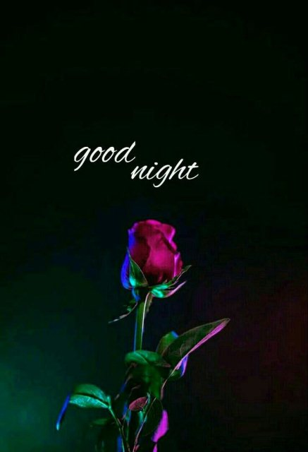 Good Night Wishes Image Greetings Images
