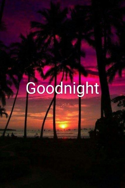 Good night wishes quotes lover image - Good night wishes quotes lover image