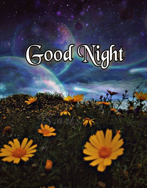 Goodnights image - Goodnights image