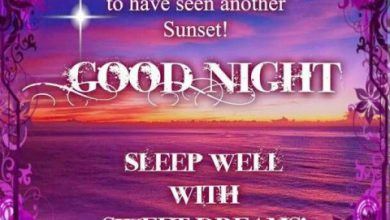 Gud nite messages image 390x220 - Gud nite messages image
