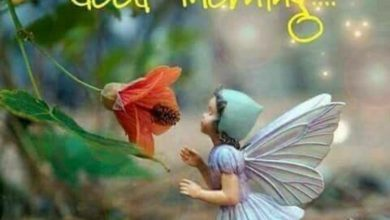 Happy morning boys and girls images 390x220 - Happy morning boys and girls images