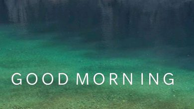 Happy morning farm photo Greetings Images 390x220 - Happy morning farm photo Greetings Images