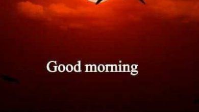 Happy morning mountains images Greetings Images 390x220 - Happy morning mountains images Greetings Images
