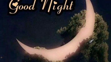 I have a good night image 390x220 - I have a good night image