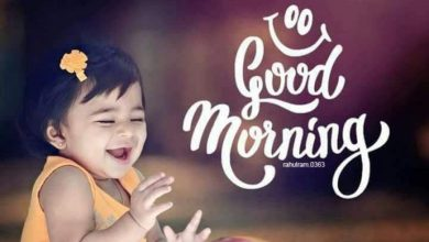 Morning greeting babys photos 390x220 - Morning greeting baby's photos