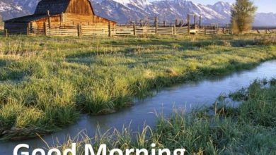 Morning greeting mountains images Greetings Images 390x220 - Morning greeting mountains images Greetings Images