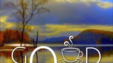 Morning greeting river images Greetings Images 390x220 - Morning greeting river images Greetings Images