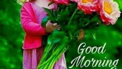 Morning wishes boys and girls images 390x220 - Morning wishes boys and girls images