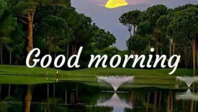 Morning wishes landscape image Greetings Images 390x220 - Morning wishes landscape image Greetings Images