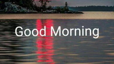 Morning wishes mountains image Greetings Images 390x220 - Morning wishes mountains image Greetings Images