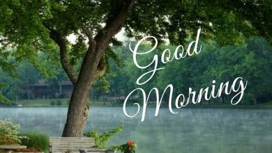 Morning wishes river photos Greetings Images 390x220 - Morning wishes river photos Greetings Images