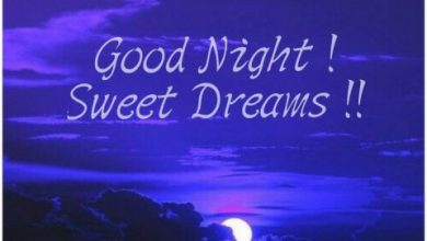 New good night wishes image 390x220 - New good night wishes image