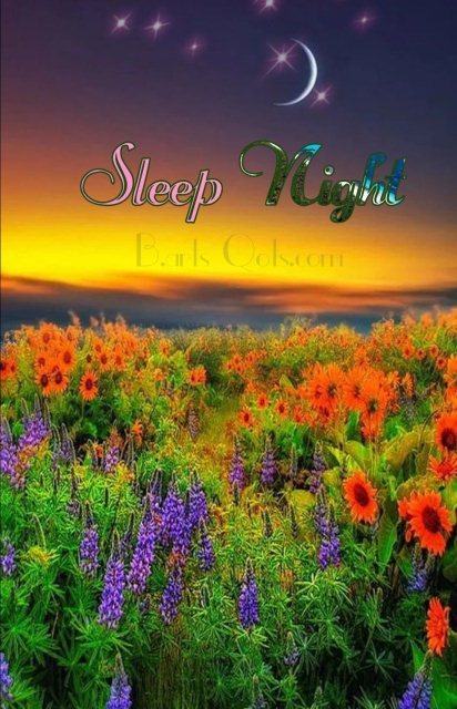 Romantic good night image - Romantic good night image