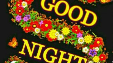 Romantic good night sms image 390x220 - Romantic good night sms image