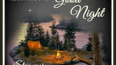 The best good night quotes image 390x220 - The best good night quotes image