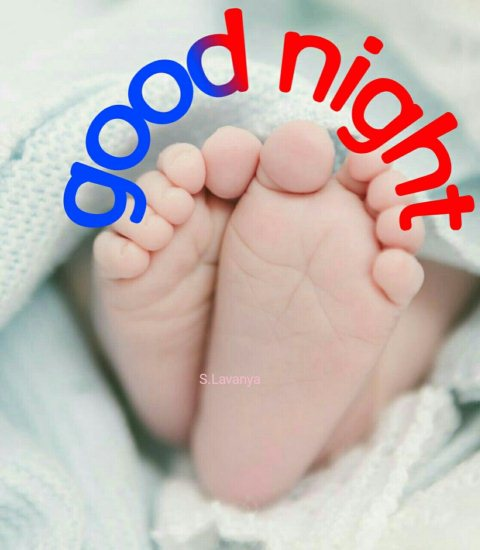 The good nite image - The good nite image