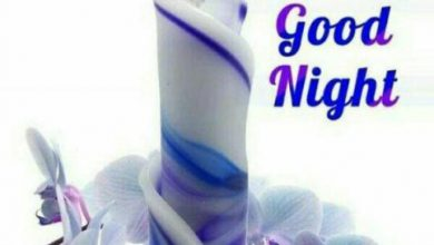 Very sweet good night messages image 390x220 - Very sweet good night messages image