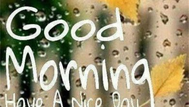 What a good morning Images 390x220 - What a good morning Images