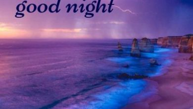 Wish good night sweet dreams image 390x220 - Wish good night sweet dreams image
