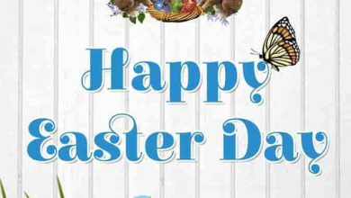 Cool Easter Cards 390x220 - Cool Easter Cards