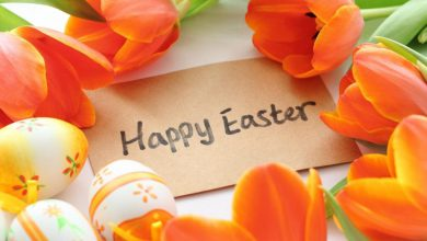 Easter Card Sayings Ideas 390x220 - Easter Card Sayings Ideas
