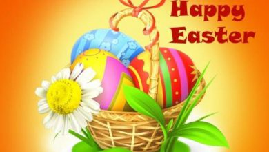Easter Funny Messages 390x220 - Easter Funny Messages