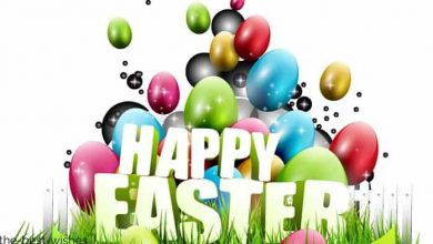 Funny Easter Sayings For Cards 390x220 - Funny Easter Sayings For Cards