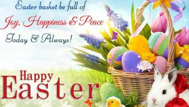 Funny Easter Wishes 390x220 - Funny Easter Wishes