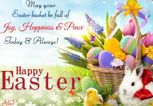 Funny Easter Wishes - Funny Easter Wishes